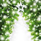 Ein Weihnachtswunsch